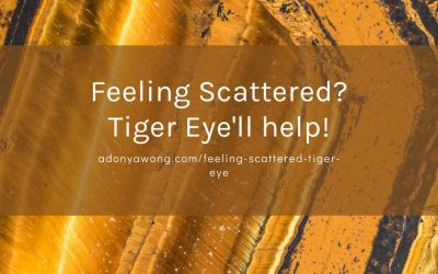 Feeling scattered? Tiger Eye'll help!